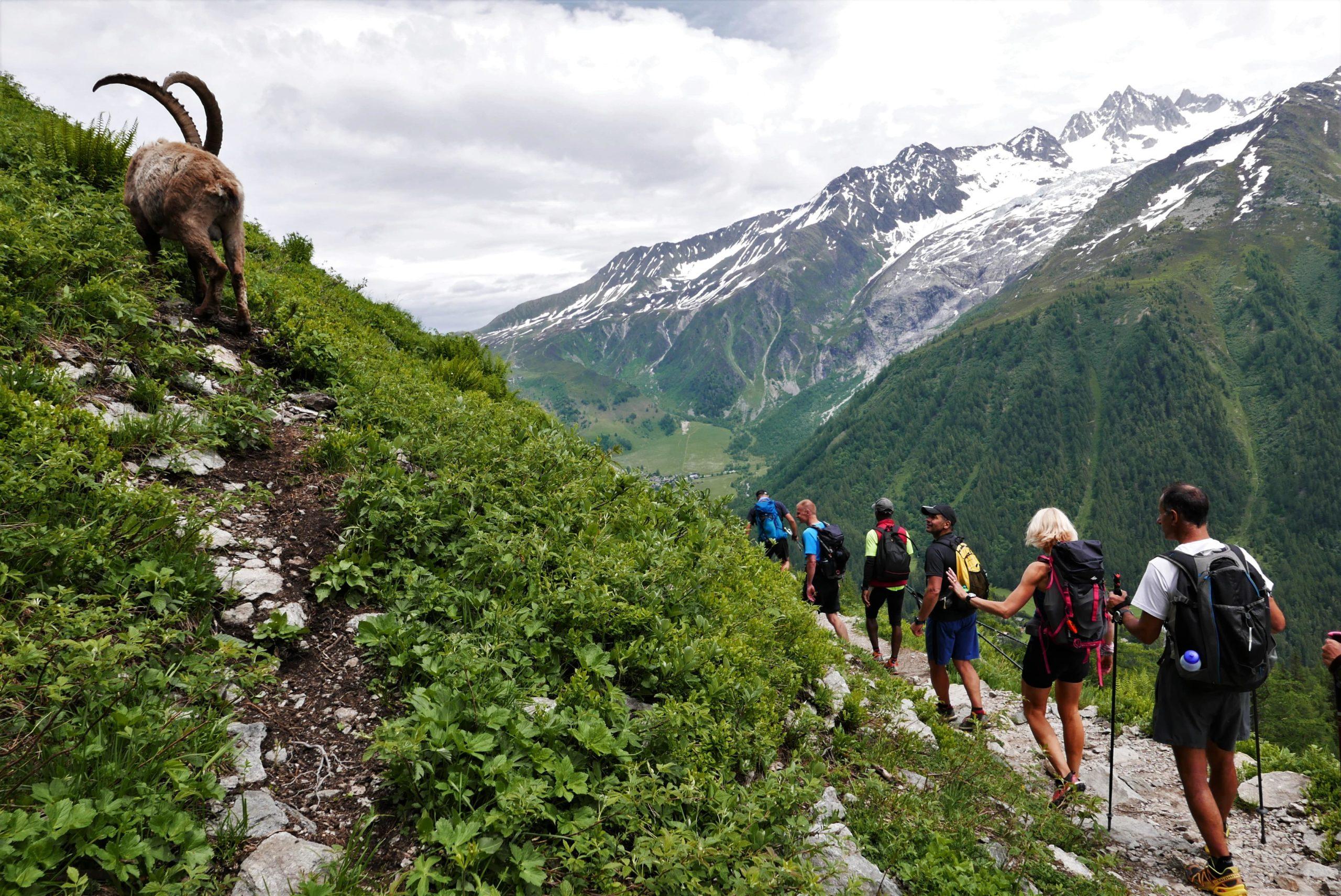 Séjour en montagne - bien-être